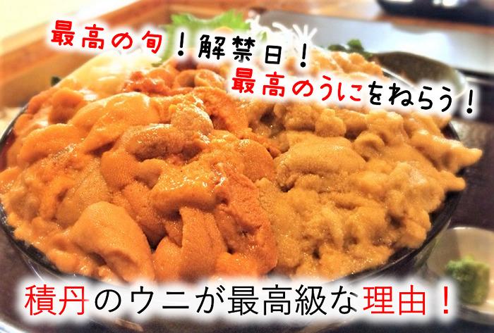 積丹うにの時期到来!最高の旬と解禁日で美味しいウニを食べる!