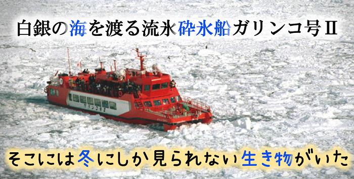 流氷砕氷船ガリンコ号Ⅱで白銀の海をかち割り進む!