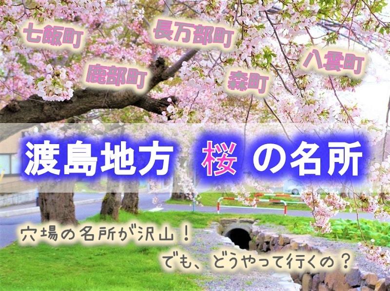 渡島地方 桜の名所10選