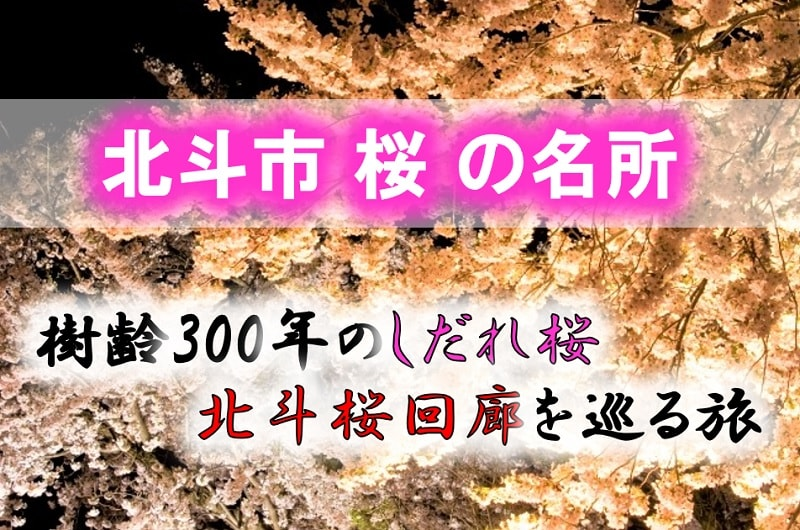 北斗市 桜の名所