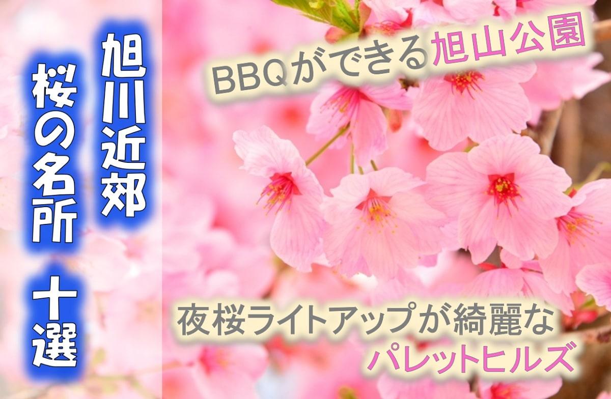 【旭川桜の名所10選】旭川近郊から厳選の花見スポット