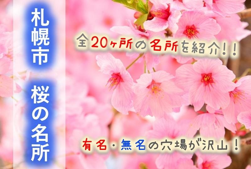 【札幌市】桜の名所20選!開花はいつ?花見の穴場や見どころは?