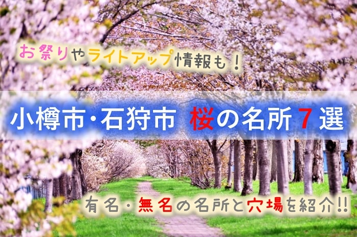 小樽市、石狩市 桜の名所