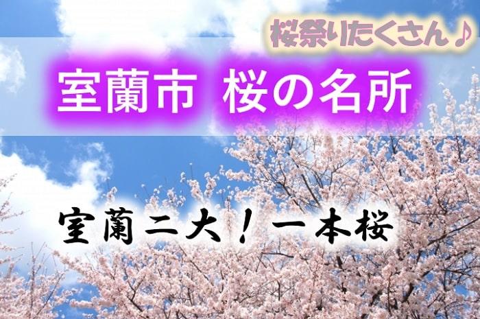 室蘭市 桜の名所