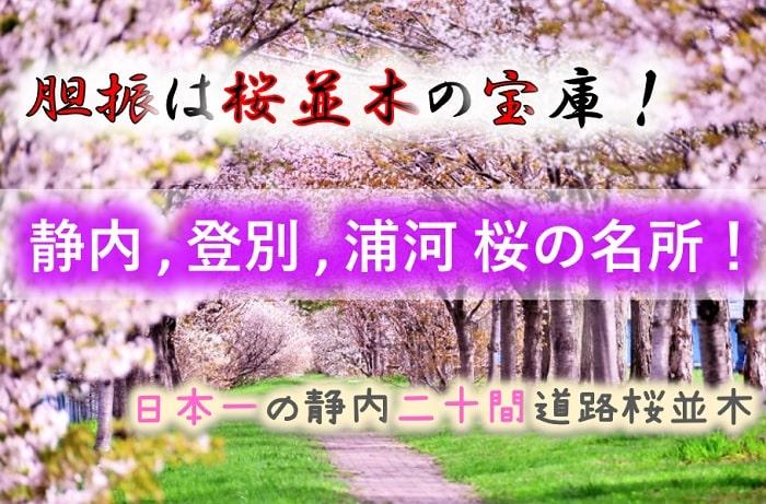 静内町、登別市、浦河町等 桜の名所
