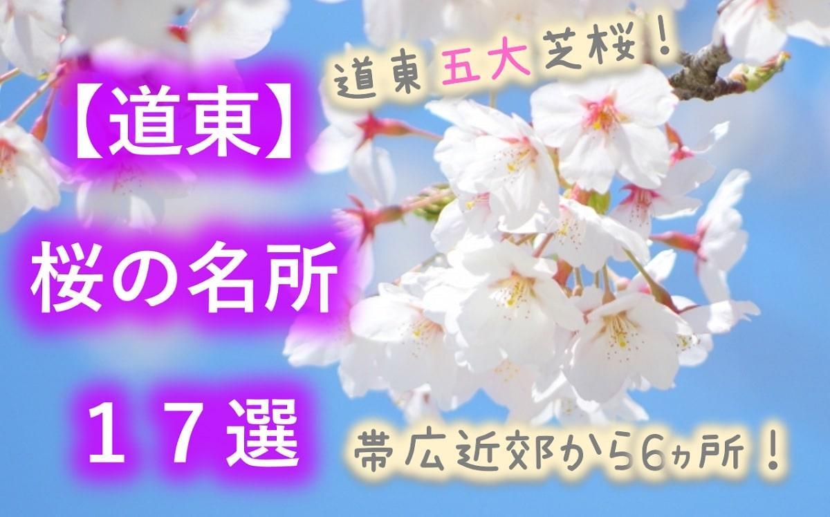 【道東】桜の名所16選!滝上・東藻琴以外にも芝桜が?帯広・根室の桜が熱い!