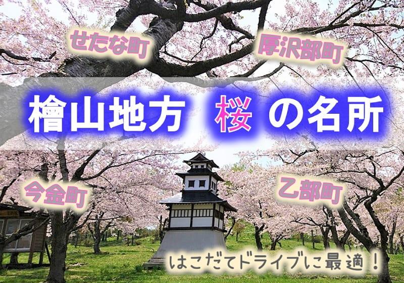 檜山地方の桜の名所