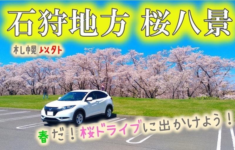 石狩地方桜八景!札幌近郊で最高の桜「戸田記念墓地公園」など名所満載!